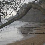 wycieczka na Wyspę Wight 5