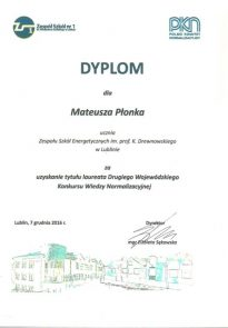 plonka_dyplom